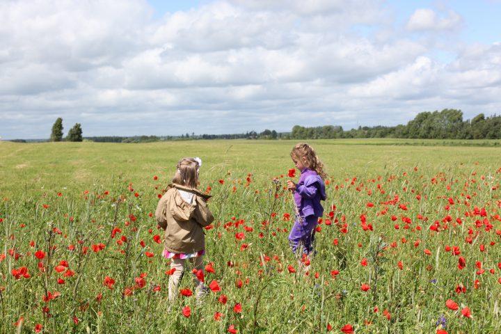 Kräuter-Workshop für Kinder ab 6 Jahren – mit den Kleinen die Natur erforschen